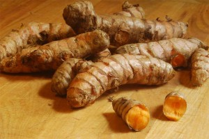 fresh turmeric root by h-bomb